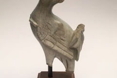Kashmirian pale limestone fragment of a peacock from Kartthikeya group