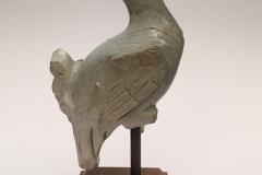 Kashmirian pale limestone fragment of a peacock from Kartthikeya group2